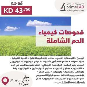 prime-medical-laboratory in kuwait