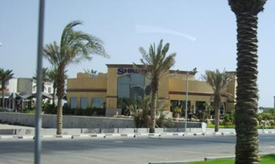 shrimpy-hawally-1-kuwait