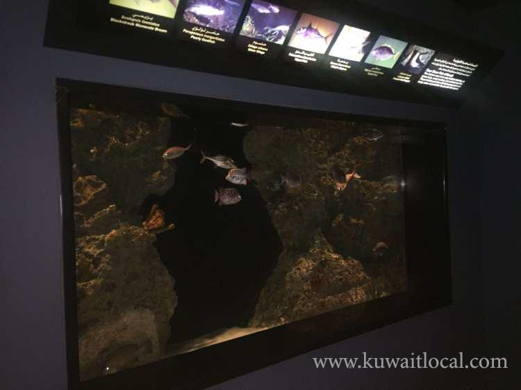 the-scientific-center-salmiya-kuwait