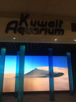The Scientific Center - Salmiya in kuwait
