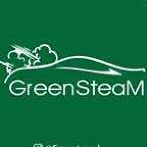 green-steam-power-of-car-steam-kuwait
