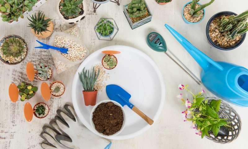 gardening-accessories-online--buy-garden-tools--equipment-kuwait