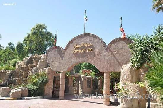 kuwait-zoo-released-winter-visiting-hours_kuwait