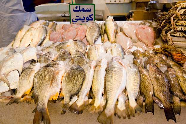 Fish Prices Hike | Kuwait Local