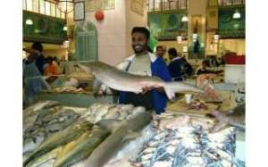 let-it-be-rotted---fish-campaign-is-success_kuwait