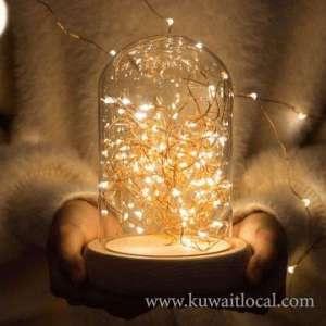 glass-dome-led-lights-kuwait